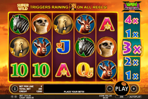 hot safari pragmatic slot